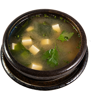 V1 MISO SUPPE